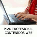 contenidoprofesionalpaginaweb